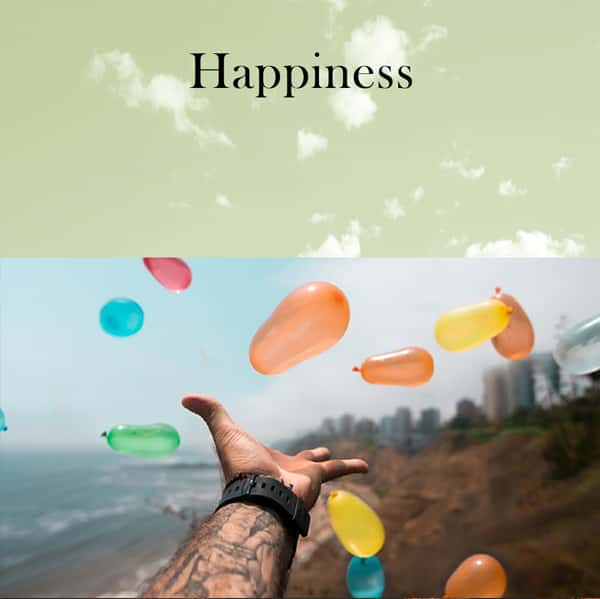 Happiness by Aroma Retail Fragrance Oil
